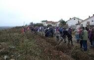 """Есенската акција """"Ден на дрвото"""" успешно реализирана во Пехчево"""
