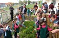 """Со низа активности во градинката ,, 7 Септември """" одбележан 16 октомври - Светскиот ден на здрава храна"""