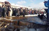 Светиот крст во реката Писа во Пехчево во рацете на Крамарски