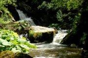 Оглас за продажба на 13 градежни парцели на Туристичката населба – Равна река