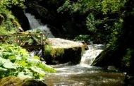 Оглас за продажба на 7 градежни парцели на Туристичката населба – Равна река