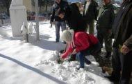 """Под мотото """"За зелено Пехчево-засади ја својата иднина"""" денеска во Пехчево одбележан Денот на дрвото"""